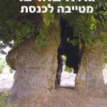 גולה בארצו – מטייבה לכנסת / סיפורו של וליד צאדק
