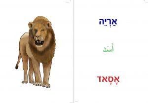 אריה מתוך ספרון בעלי חיים
